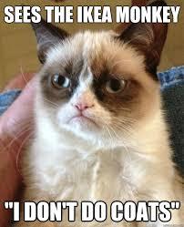 Ikea Monkey Meme - sees the ikea monkey cat meme cat planet cat planet