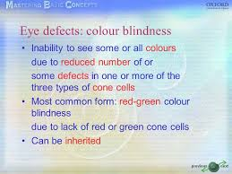 Most Common Colour Blindness The Eye Image Formation Accommodation Focusing On Near Objects