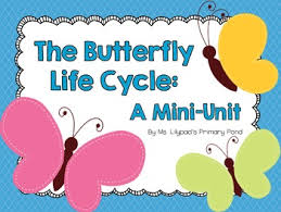 butterfly life cycle unit lesson plans worksheets craft