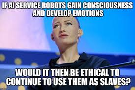Ai Meme - if ai service robots gain consciousness and develop emotions would