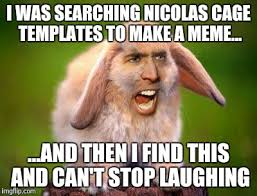 Cage Meme - image tagged in nicolas cage bunny imgflip