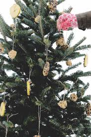the perfect way to recycle your christmas tree u2014 under a tin roof
