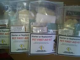 pet safety crusader u2013 helping people help their pets
