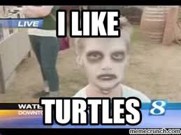 I Like Turtles Meme - like
