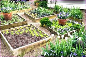 Raised Gardens Ideas Raised Garden Bed Design Ideas Small Raised Bed Vegetable Garden