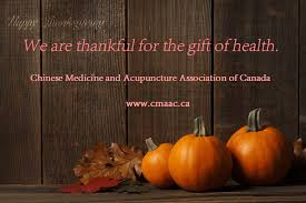 happy thanksgiving c m a a c promotion tcm and acupuncture
