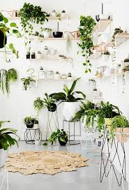 ideas for displaying pictures on walls best 25 plant wall ideas on pinterest healthy restaurant design