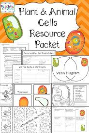 the 25 best cells activity ideas on pinterest plant cell parts
