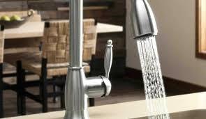 Costco Kitchen Faucets White Kitchen Sink Taps Kitchen Water Spigot Pull Spray