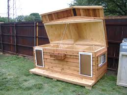 Plans For Dog House Modern Pallet Free Building A Simple Snoopy