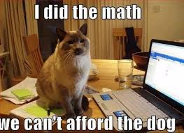 cat meme archives page 939 of 982 cat planet cat planet