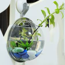 fish wall mounts compare prices on betta tank fish online shopping buy low price