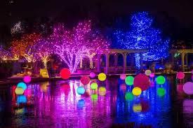 o fallon christmas lights blossoms of light denver botanic gardens york st denver christmas