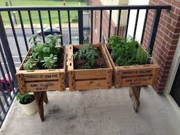 Ideas For Small Balcony Gardens by Best 20 Balcony Herb Gardens Ideas On Pinterest Patio Herb