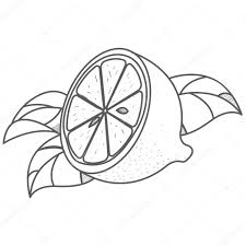 citroen logo helft van citroen logo helft van citroen logo overzicht tekening