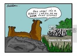 safari cartoon safari cartoons and comics funny pictures from cartoonstock