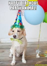 Birthday Animal Meme - happy birthday animal meme