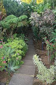 Kona Botanical Gardens Botanical Gardens Kona Hawaii Gardens In Hilo Area World