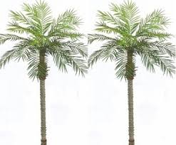 fake trees for home decor artificial phoenix palm trees outdoor fake palm trees