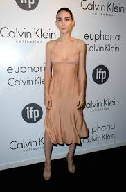 cannes fugs and fab the calvin klein women in film party go fug