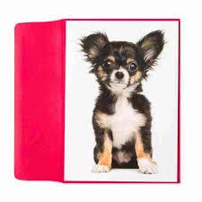 chihuahua puppy sitting by marcel schurman birthday cards