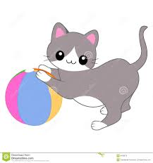 cat playing with a ball stock images image 8439874