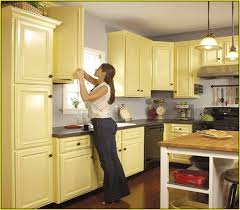Kitchen Cabinets Before And After Painting Old Kitchen Cabinets Before And After Home Design Ideas
