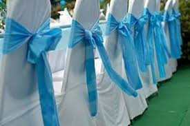 blue chair sashes the bows on the back of the seat to match the wedding color