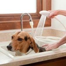 compare prices on sink shower hose online shopping buy low price new dog supplies multi functional pet dog cat shower head spray drains strainer bath hose