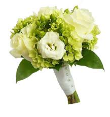 wedding flowers halifax scotia