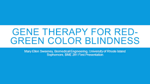 Gene Therapy For Blindness Gene Therapy For Red Green Color Blindness Mary Ellen Sweeney