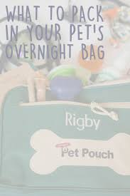 what to pack in your dog u0027s travel bag u0026 checklist