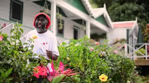 pharrell williams happy from saba caribbean happyday
