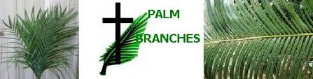 palm branches for palm sunday easter palm sunday
