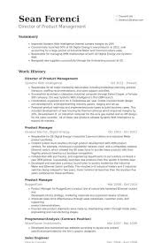 Digital Content Manager Resume Product Manager Free Resume Samples Blue Sky Resumes