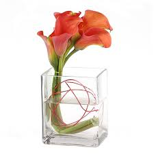 Nyc Flower Delivery Calla Lilies Flower Delivery Nyc Plantshed Com