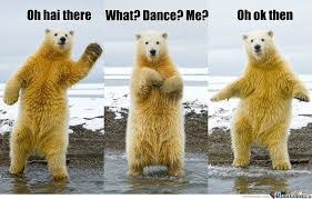 Bear Stuff Meme - dancing polar bear polar bear dancing and bears