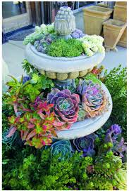 planter for succulents outdoor succulent planter box shallow planter for succulents