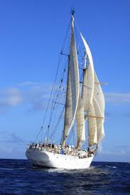sea semester study abroad with sea semester ocean science