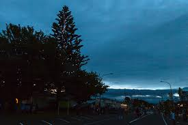 king country energy tree of light waitomo district council