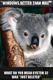 Koala Meme - windows better than mac what do you mean system 32 was just