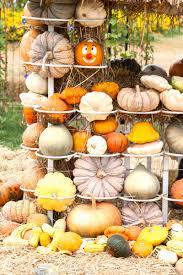 halloween photography props online get cheap halloween backdrops photography aliexpress com