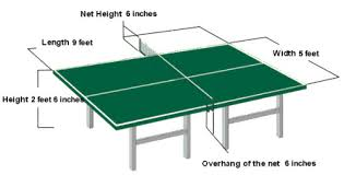 ping pong vs table tennis how to choose your table tennis table