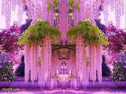 japan flower tunnel wisteria flower tunnel kawachi fuji gardens kitakyushu japan