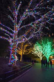 Zoo Lights Coupons by Zoolights At The National Zoo Kid Trips Family Travel Virginia