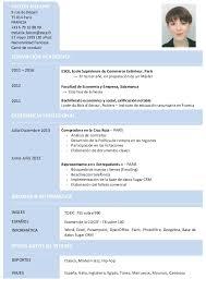 Resume Espanol Dise 241 O De Curriculum Digital Print Original Cv Resume