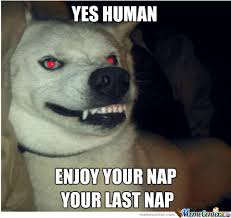 Demon Memes - demon dog by partyparty meme center