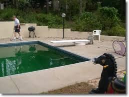 concrete resurfacing pool decks driveways and more