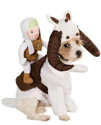 Dog Costumes Halloween 424 Animal Halloween Costumes Images Animals