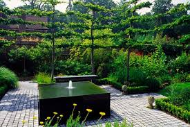 landscape ideas for backyard fountains garden post loversiq